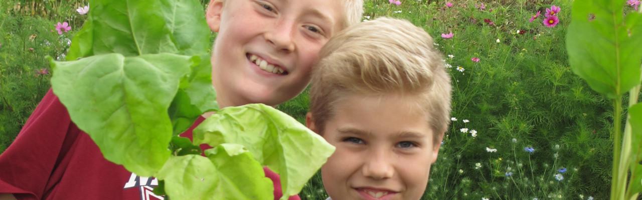 Spil kan påvirke børn til at spise mere frugt og grønt, viser en ny forskningsgennemgang. Foto: Anne Bech