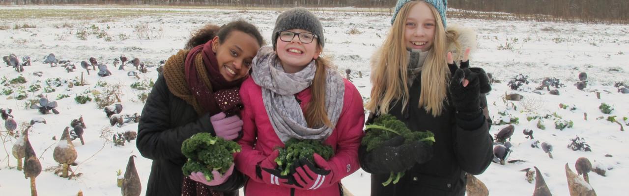 Pigerne fra 6D i vinterlandskabet på Krogerup Avlsgaard. Foto: Anne Bech