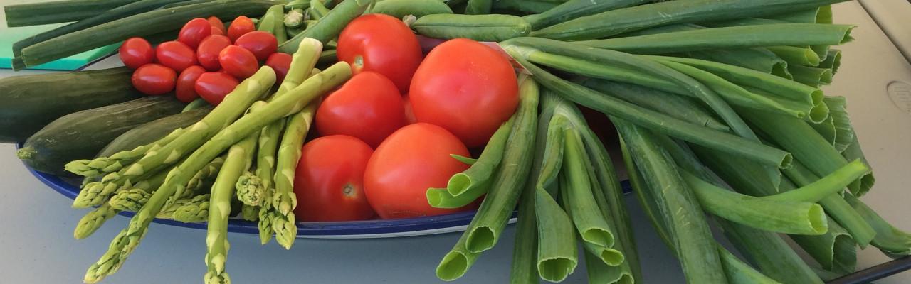 Nøglen til velsmag fra planteriget er umami. Foto: Cathrine Terkelsen