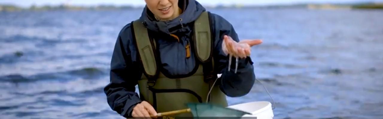 Gastrofysiker Mie Thorborg med vandmand, som hun med sin metode kan forvandle til sprøde chips. Foto: SDU