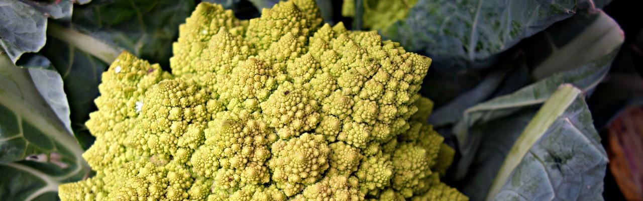 Grøntsager som f.eks. romanesco indeholder kostfibre. Foto: Pixabay