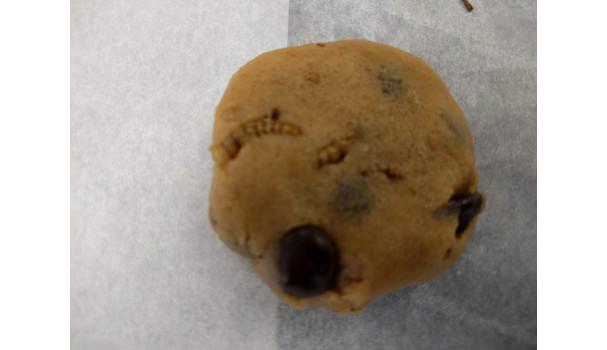 Melormene er tydelige i en cookie. Ville du spise den?